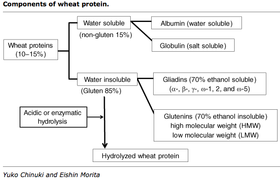 Components of Wheat Protein